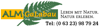 logo350_mit_tel